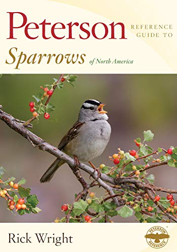 Pdf Outdoors Peterson Reference Guide to Sparrows of North America (Peterson Reference Guides)