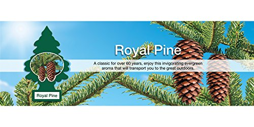 076171101013 - Car Freshener 50101 Little Tree Air Freshener-Royal Pine carousel main 3