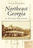 Northeast Georgia in Vintage Postcards (Postcard History Series)