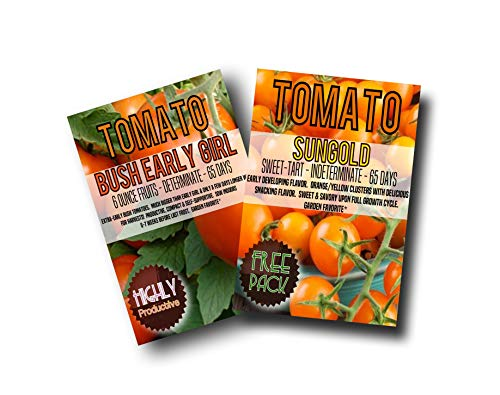 Bush Early Girl Hybrid Tomato Seeds (200) + Bonus Pack of Your Choice (Free Sungold) (Seeds Sungold Tomato)