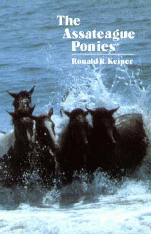 The Assateague Ponies