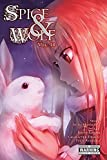Spice and Wolf, Vol. 14 (manga) (Spice and Wolf (Manga))