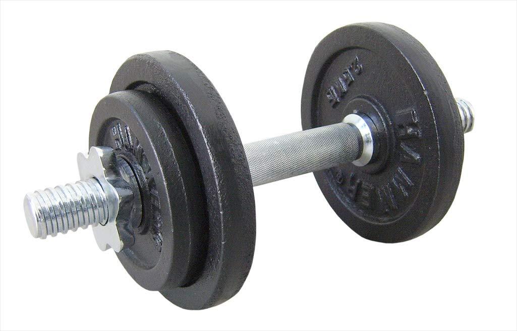 Finnlo - Mancuernas (10 kg, 2 Discos de 1,25 kg y 2 Discos de 2,5 ...