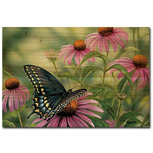 WGI Gallery WA-BSB-2416 Black Swallowtail Butterfly Wall Art