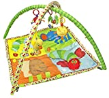 Kids Preferred – Eric Carle Baby Activity Gym with Pillow Review