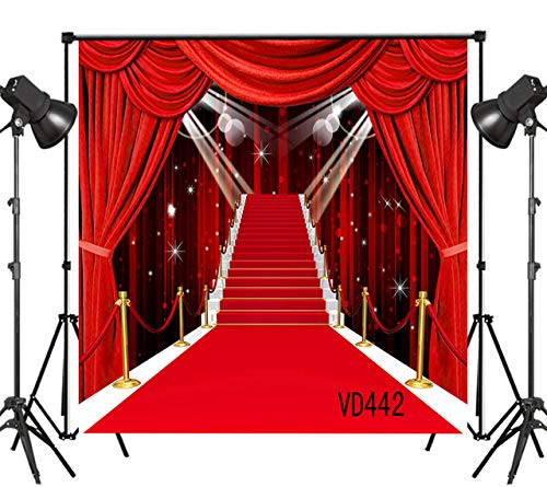LB Red Carpet Wedding Bridal Shower Backdrops for Photography 10x10ft Birthday Photo Background Photo Shoot Backdrop Vinyl Customized Studio Prop VD442]()