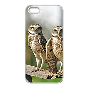Ready To Fly Nigh Owl Hight Quality Plastic Case for Iphone 5s