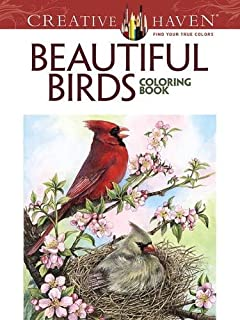 creative haven beautiful birds coloring book adult coloring - Bird Coloring Book
