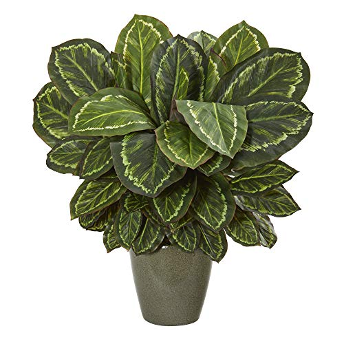 Nearly Natural 8759 25in. Maranta Artificial Decorative Planter Silk Plants, Green