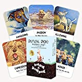 Divine Dog Wisdom Cards 2nd Edition