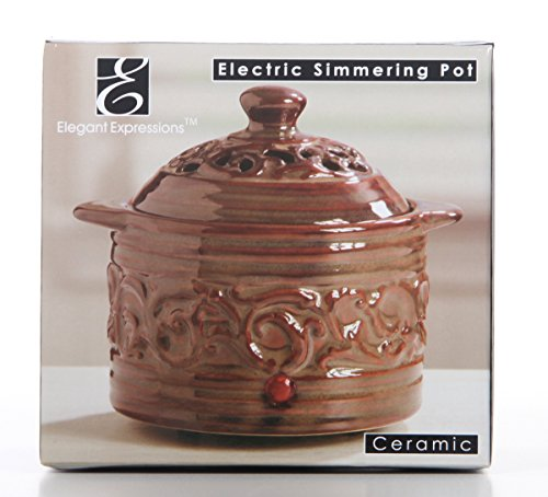 Hosley 5.12'' High Brown Electric Potpourri Warmer DIPOO Ideal Gift for Wedding, Special Occasions, Spa, Aromatherapy, Reiki, Meditation Settings and Home Office P1 by Hosley