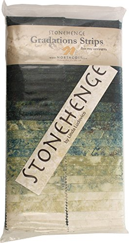 Stonehenge Gradations Robin's Egg Stone Strips 40 2.5-inch Strips Jelly Roll Northcott (Stone Strip)