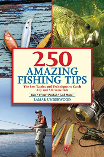 250 Amazing Fishing Tips: The Best Tactics and Techniques to Catch Any and All Game Fish (Best Lures For Catfish)