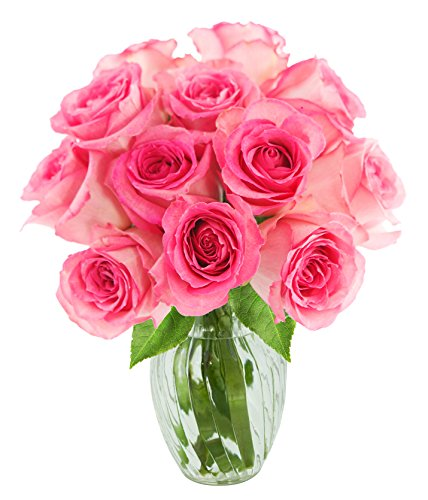 KaBloom Valentine's Day Special: Sweet Pink Bouquet of 12 Fresh Cut Pink Roses (Long Stemmed) with Vase