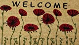 Home Garden Hardware 37206 Red Flower Printed Coir Doormat,Natural,Small