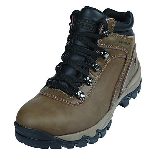 Northside Men's Apex Mid Hiking Boot, Brown, 12 D(M) US (Apex Mens Shoes)