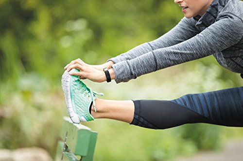 Fitbit Alta Fitness Tracker, Silver/Black, Small