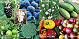 buy Fruit Veggie Combo Pack Chives, Blackberry, Blueberry, Pepper, Tomato, Broccoli, Cucumber (Organic) 1095+ Seeds 650327337350 + 8 Free Plant Markers now, new 2018-2017 bestseller, review and Photo, best price $6.29