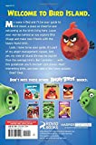 The Angry Birds Movie Official Guidebook