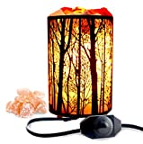 (US) Natural Himalayan Salt Lamp,Air Purifying Pink Salt Rock Lamp Night Light in forest Design Metal Basket with Dimmer Switch (4.1 x 6.5