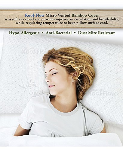 Pillows for Sleeping Hypoallergenic Bed Pillows Positioners