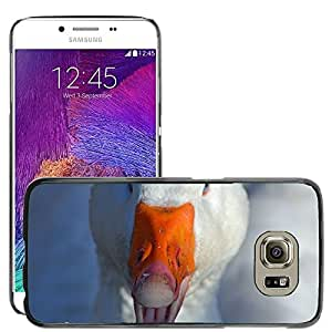Hot Style Cell Phone PC Hard Case Cover // M00114843 Goose Bird Poultry Domestic Goose // Samsung Galaxy S6 (Not Fits S6 EDGE)