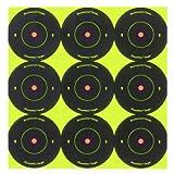 Birchwood Casey Shoot-N-C 2-Inch Round Bull's-Eye Target (Pack of 12) offers