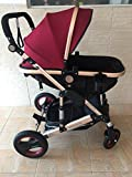 0--36 months baby stroller 2 in 1 stroller lie or damping folding light weight Two-way use four seasons (3)