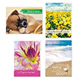 Pack of 12 Religious Get Well Cards, Boxed