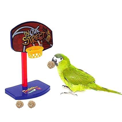 Aolvo Funny Bird Parrot Toy Enjoy Teach Your Bird Play Basketball Pet Birds Chew Parakeet Bell Balls Parrot Toys Birdie Basketball Hoop Prop