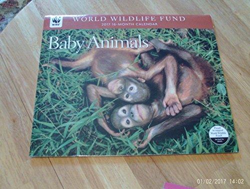 2017-world-wildlife-fund-baby-animals-deluxe-wall-calendar