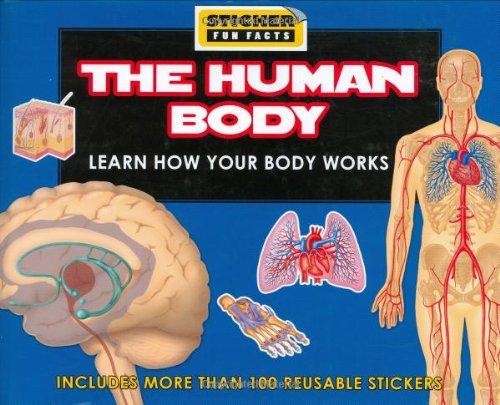 Sticker Fun Facts: The Human Body