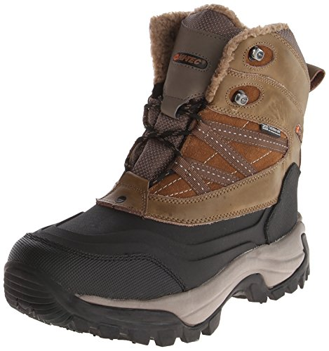 8a8388019a6 Asolo Mens TPS 520 GV Evo Chestnut Size 11 - Hiking Boots for ALL