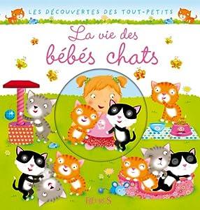 """Afficher """"La Vie des bébés chats"""""""