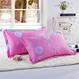 D&L Bedroom Polyester Pillowcase,Guest Room Bedding Pillow Protector Hypoallergenic Comfortable Durable 1pc-X 48x74cm(19x29inch)