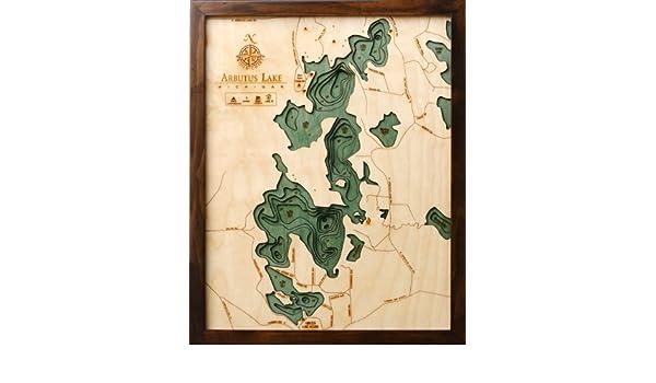 Amazon.com: Arbutus Lake (Traverse), Michigan 3-D Nautical ... on