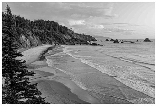 Marmont Hill MH-MWW-SCWTZ-09-C-30 20 Inch x 30 Inch Rugged Coast Giclee Art Print on Stretched Canvas by Don - Mh Art 9