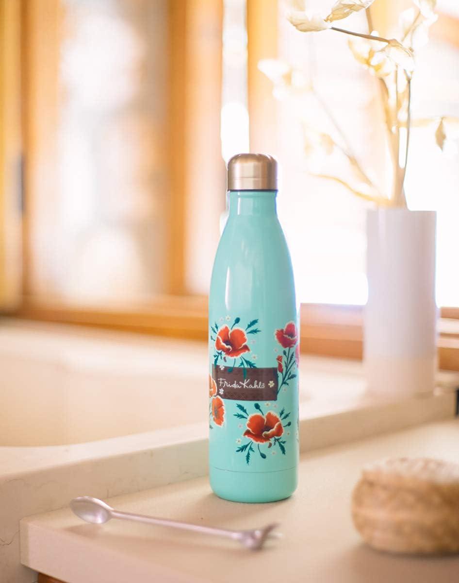500 milliliters Erik CFK003 Wasserflasche Trinkflasche edelstahl
