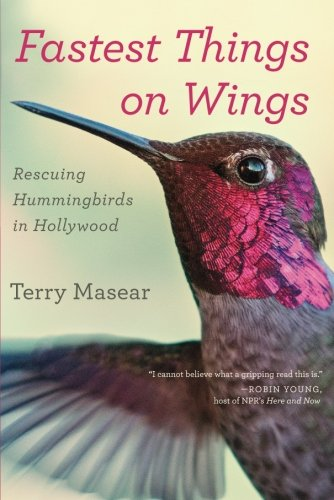 Fastest Things on Wings: Rescuing Hummingbirds in Hollywood - Hummingbird Wings
