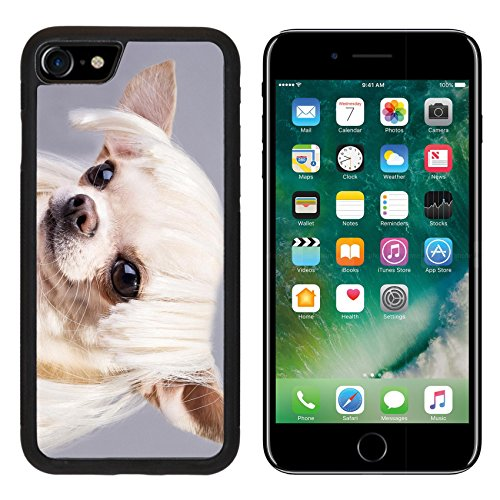 MSD Premium Apple iPhone 7 Aluminum Backplate Bumper Snap Case iPhone7 beautiful dog close up portrait Image ID (Cute And Easy Hairstyles For Halloween)