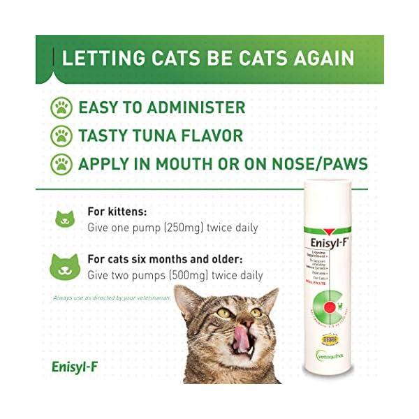 Vetoquinol Enisyl-F Oral Paste: L-Lysine Supplement for Cats - Tuna Flavor, 3.4oz (100mL) Pump 5