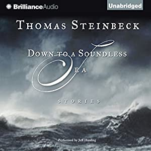 Down to a Soundless Sea Audiobook
