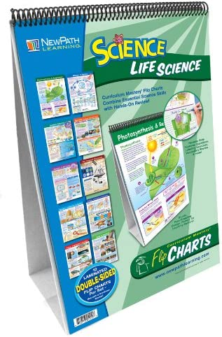 MIDDLE SCHOOL LIFE SCIENCE FLIP: Amazon.es: Juguetes y juegos