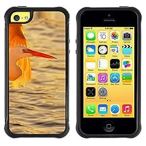 "Hypernova Defender Series TPU protection Cas Case Coque pour Apple iPhone 5C [Cigüeña Océano de sol Sol Verano""]"