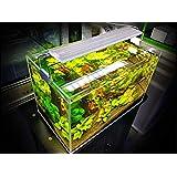 حوض الأسماك القابل للتمدد عالي الجودة من بي &كيه، مصباح إضاءة بمشبك – مقاس الخزان المناسب: 20-33 سم