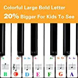Piano Keyboard Stickers for 88/61/54/49/37
