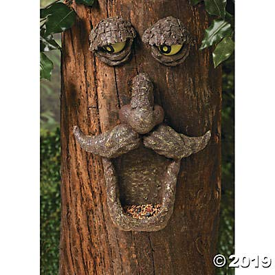 Fun Express Tree Face Bird Feeder