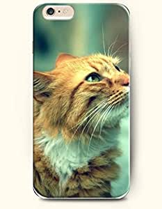 Case Cover For HTC One M9 es Cat Looking up and Watching - Hard Back Plastic Phone Cover Authentic