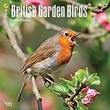 British Garden Birds 2018 Wall Calendar