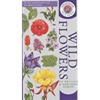 Wild Flowers of Britain and Northern Europe (Kingfisher field guides)